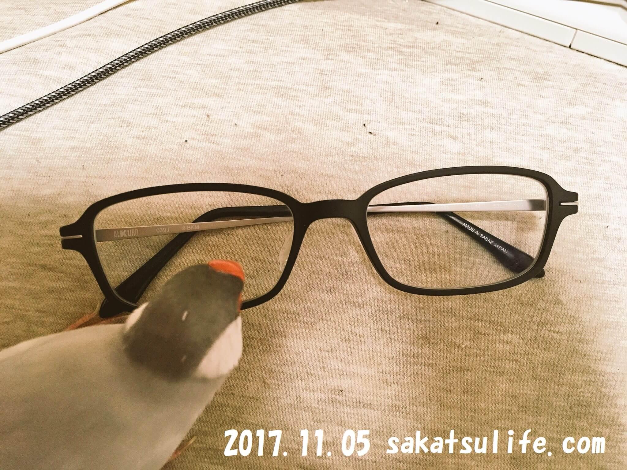メガネと文鳥